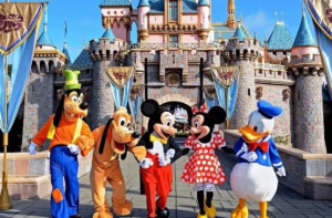 Disney Vacation Information